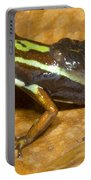 Poison Frog With Eggs Portable Battery Charger