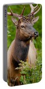 Portrait Of A Bull Elk Portable Battery Charger