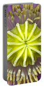 Purple Poppy Blossom Into A Star Portable Battery Charger