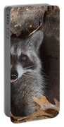 Raccoon Procyon Lotor Portable Battery Charger