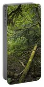 Rain Forest On Vancouver Island Portable Battery Charger