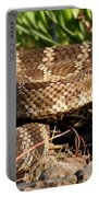 Rattlesnake Portable Battery Charger