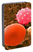 Red And White Blood Cells, Sem Portable Battery Charger