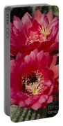 Red Cactus Flowers Portable Battery Charger