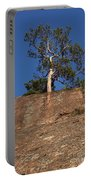 Red Pine Tree Portable Battery Charger