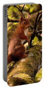 Red Squirrel Portable Battery Charger