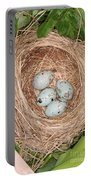 Red-winged Blackbird Nest Portable Battery Charger