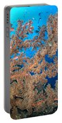 Reef Scene With Sea Fan, Papua New Portable Battery Charger