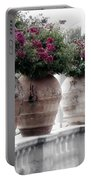 Ringling Courtyard Portable Battery Charger