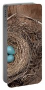 Robins Nest With Eggs Portable Battery Charger