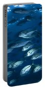 School Of Jacks In Motion, Belize Portable Battery Charger