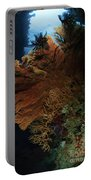 Sea Fans, Fiji Portable Battery Charger