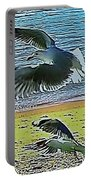 Sea Gulls In Flight  Portable Battery Charger