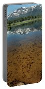 Shallow Water Reflections Portable Battery Charger