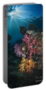 Soft Coral And Sunburst In Raja Ampat Portable Battery Charger