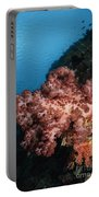 Soft Coral Seascape,  Indonesia Portable Battery Charger