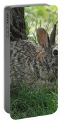Spring Time Rabbit Portable Battery Charger