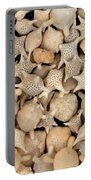 Star Sand Foraminiferans Portable Battery Charger