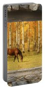 Stone Window View And Beautiful Horse Portable Battery Charger