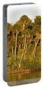 Sunset Palm Trees Portable Battery Charger