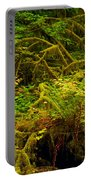 Temperate Rain Forest Portable Battery Charger by Adam Jewell