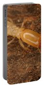 Termite Portable Battery Charger