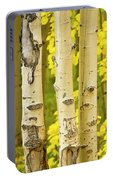 Three Autumn Aspens Portable Battery Charger