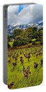 Vineyards And Mt St. Helena Portable Battery Charger