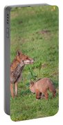 Vixen And Cub Portable Battery Charger