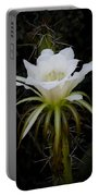 White Echinopsis Flower  Portable Battery Charger