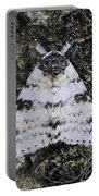 White Underwing Moth Portable Battery Charger