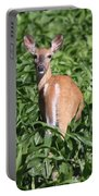 Whitetail Deer Portable Battery Charger
