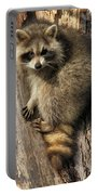 Young Raccoon Portable Battery Charger