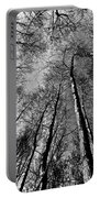 Epping Forest Trees Portable Battery Charger