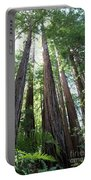 Redwoods Sequoia Sempervirens Portable Battery Charger
