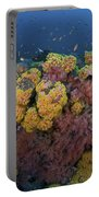Reef Scene With Coral And Fish Portable Battery Charger