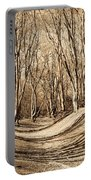 Ambresbury Banks Bronze Age Fortification Portable Battery Charger