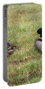 Mallard Ducks Portable Battery Charger