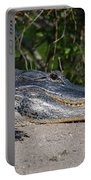 19- Alligator Portable Battery Charger