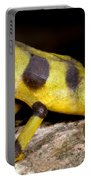 Harlequin Toad Portable Battery Charger