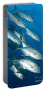 A School Of Bigeye Trevally, Papua New Portable Battery Charger