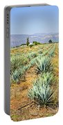 Agave Cactus Field In Mexico Portable Battery Charger