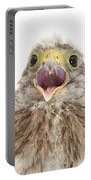 Baby Kestrel Portable Battery Charger