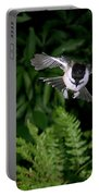 Black-capped Chickadee In Flight Portable Battery Charger