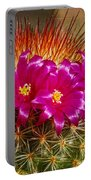 Cactus Crown Portable Battery Charger