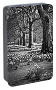 Daffodils In St. James's Park Portable Battery Charger