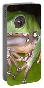 Giant Monkey Frog Portable Battery Charger