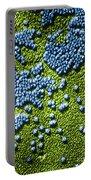 Hepatitis Virus Portable Battery Charger