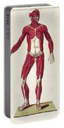 Historical Anatomical Illustration Portable Battery Charger