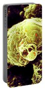 Hiv-1 Infected T4 Lymphocyte Sem Portable Battery Charger